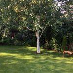 Gardener in Hale