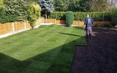 Need the Help of a Professional Gardener in Timperley?